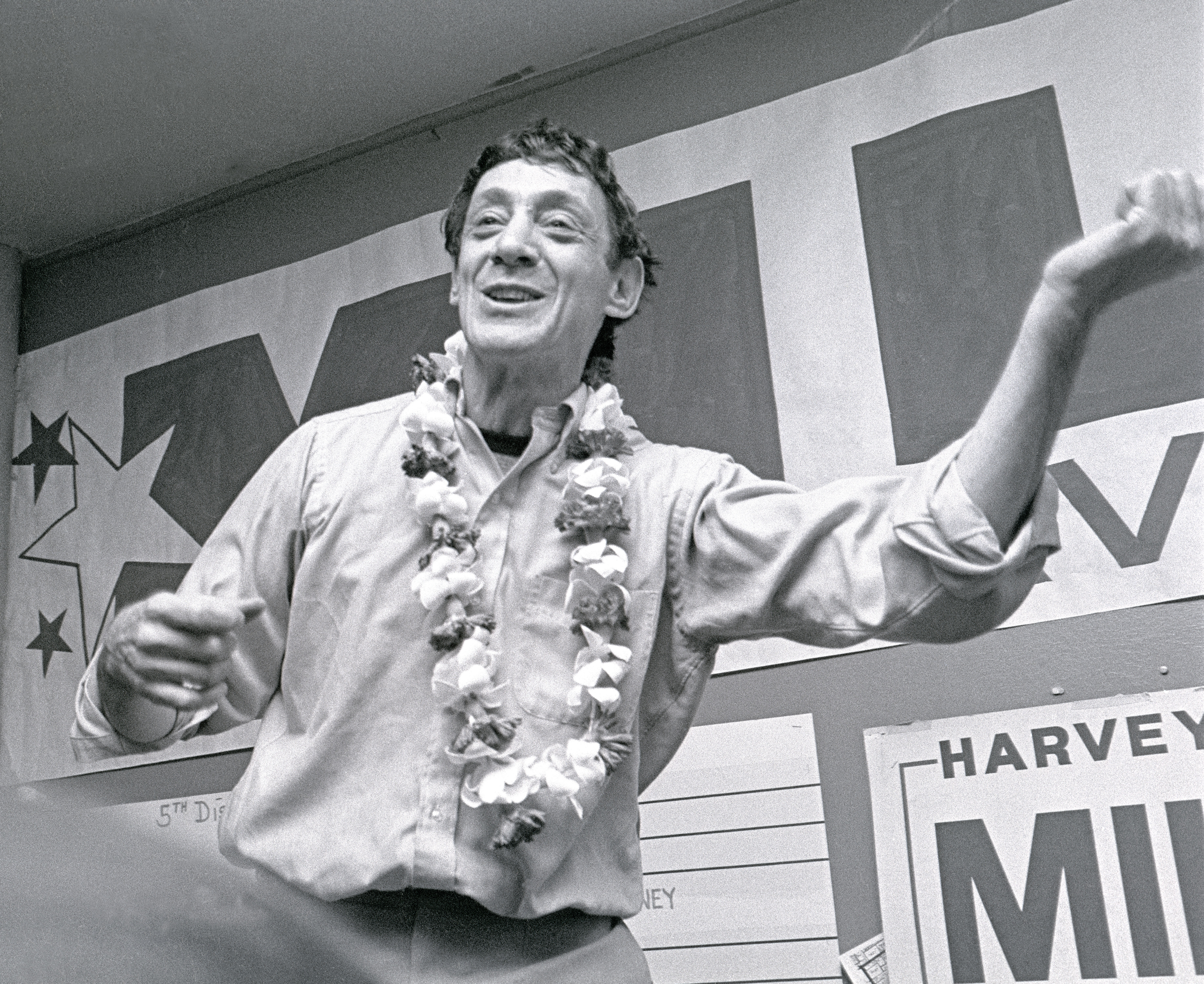 Chapter 3:- Harvey Milk feature