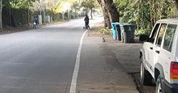 Painted pedestrian zone