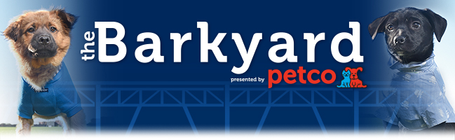 Woof! Get on the waitlist for The Barkyard presented by Petco. Our Pet Concierge will contact you via email if your waitlist status changes. At that time, you will be asked to submit your dog's vaccination records, license number and other details about your dog. Currently only those who have been notified regarding eligibility to participate in 2016 Dog Days of Summer or future Bark at the Park events and have current vaccination records through September 29 will have the opportunity to purchase tickets.