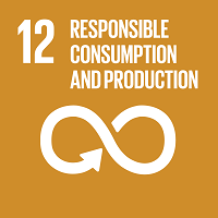 Goal 12 - Ensure sustainable consumption and production patterns
