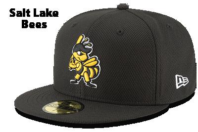 Salt Lake Bees
